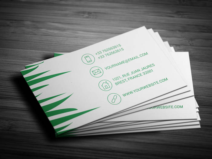Lawn Care Business Card - Back