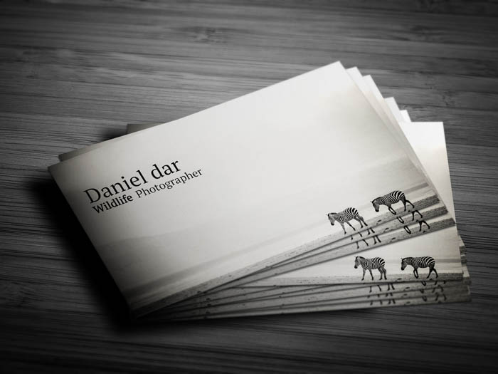 Wildlife Photographer Business Card - Front